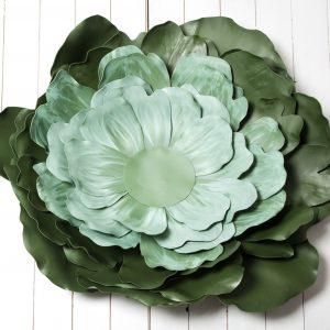 Zeli jako květ, fotorekvizity