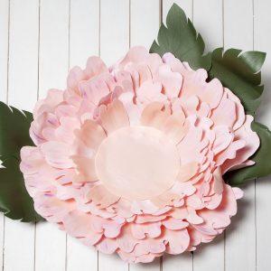 Růžový květ , fotorekvizity